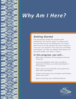 Flex Modules Why Am I Here Journal, Pkg. of 25