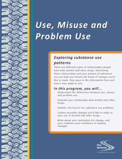 Flex Modules Use, Misuse and Problem Use Journal, Pkg. of 25