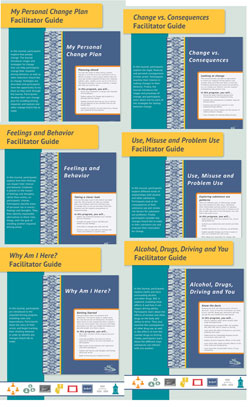 Flex Modules Facilitator Guides, Set of 6 Topics