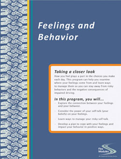 Spanish Flex Modules Feelings and Behavior Journal, Pkg. of 25